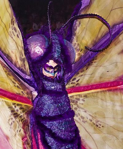 Vlinderkostuum voor steltlopers
